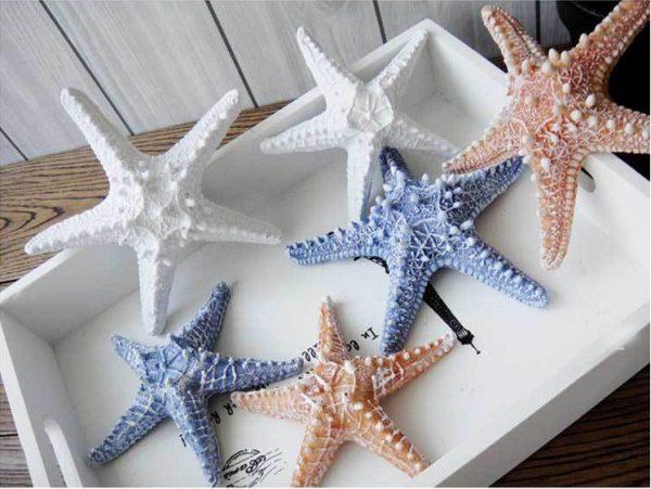 ستاره دریایی بزرگ