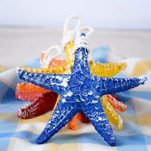 ستاره دریایی متوسط