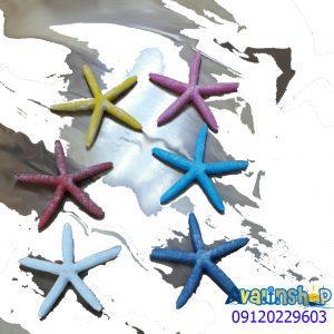 ستاره دریایی 5563