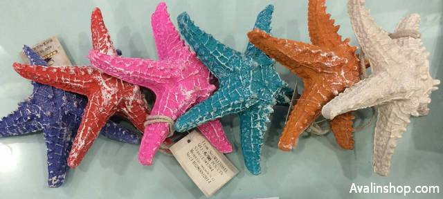 ستاره دریایی